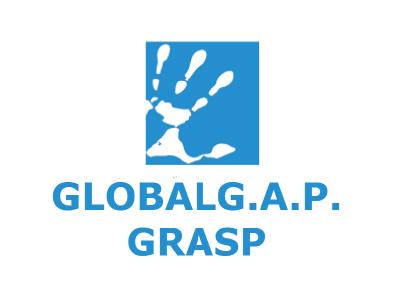 Global Grasp